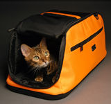 Airplane Approved Pet Carrier Sleepypod Air