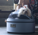 Sleepypod Mobile Pet Bed, pet safety
